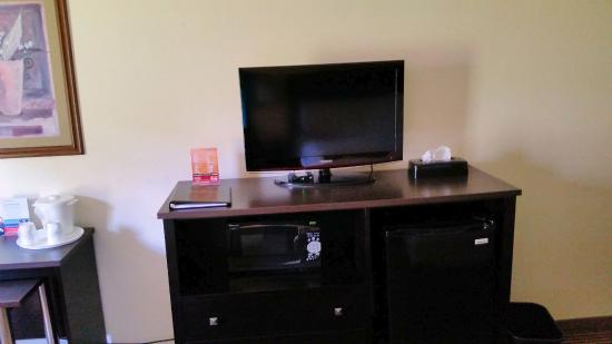 Ramada Wisconsin Dells: TV, refrigerator, & microwave