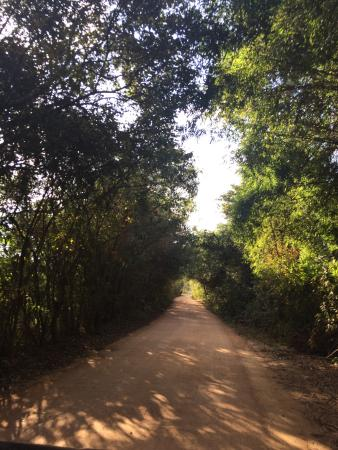 Sabor Rural Foto