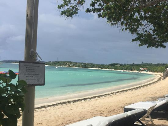 Paradise Island & The Mangroves (Cayo Arena): Back at there base