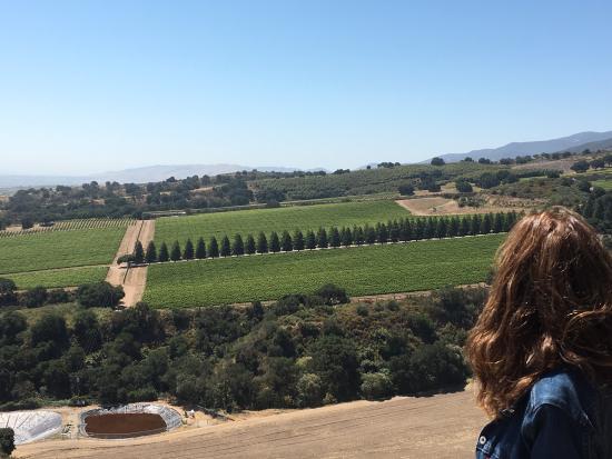 Hahn Estate Winery