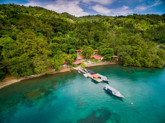 NAD-Lembeh Resort: NAD Resort and it's surrounding jungle