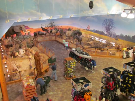 west virginia cabela s - 28 images - are we there yet my ...