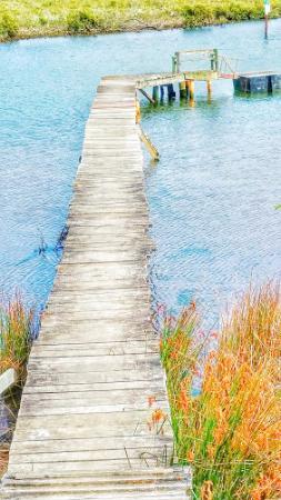 Katikati, Nieuw-Zeeland: Little Jetty along the Haiku Path - Uretara Stream.