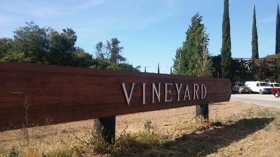 Vineyard Farmers Market