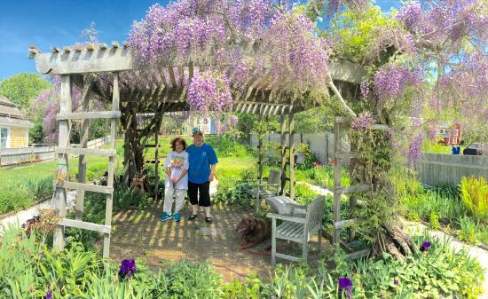 Suzanne's Garden