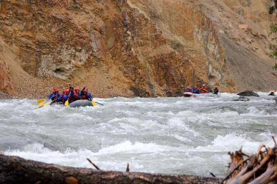 Canyon Raft Company: Elk river