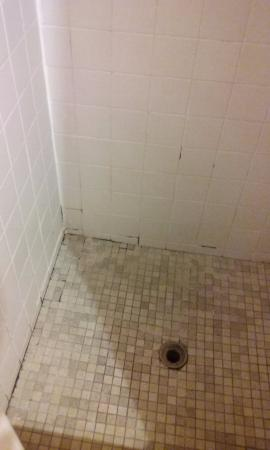 Fulton, MS: Shower Floor