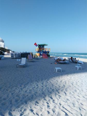 Lexington Hotel - Miami Beach: IMG_20160310_164124_large.jpg