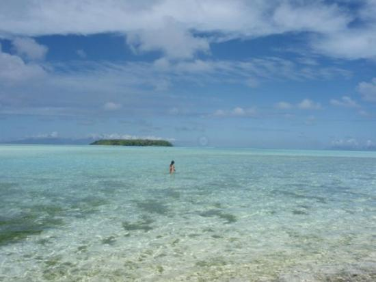 Society Islands, French Polynesia: Dans le lagon Tetiaroa
