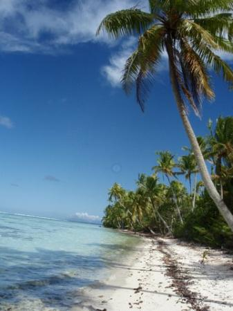 Society Islands, French Polynesia: Une plage