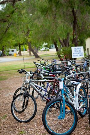 Albany, Avustralya: Variety of bikes available
