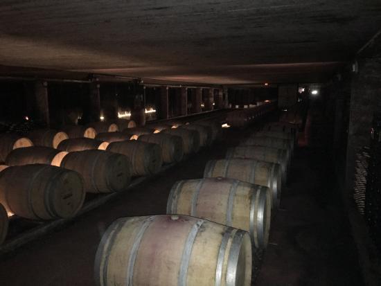 Fronton, France: Cellar - Need a Straw