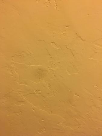 Hyatt Centric Santa Barbara: Stucco walls in room