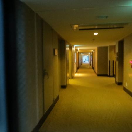 Hotel Harvest Nasu : 廊下