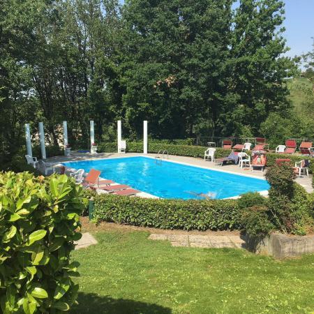 Piscina e zona solarium - Foto di Park Hotel Fantoni, Tabiano ...