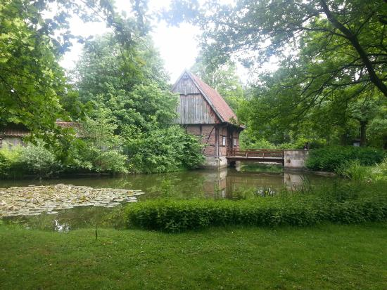 Mühlenhof-Freilichtmuseum: Entrada encantadora