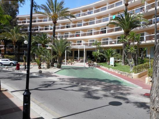 Holidays at Whala Beach Hotel in El Arenal, Majorca