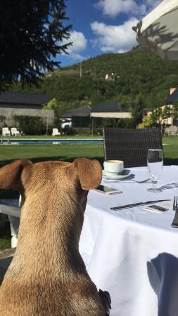 Hotel Florido: Zona de desayuno al aire libre