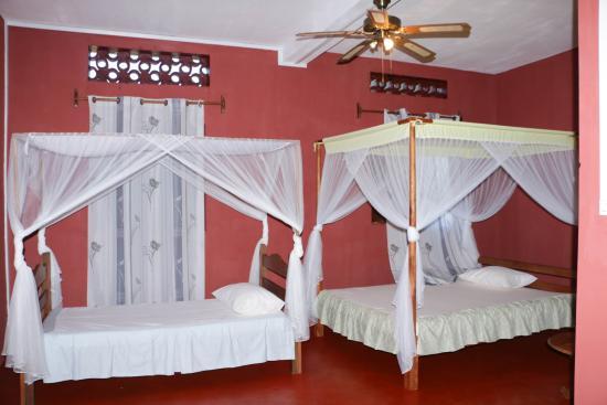 Hotel Nautile