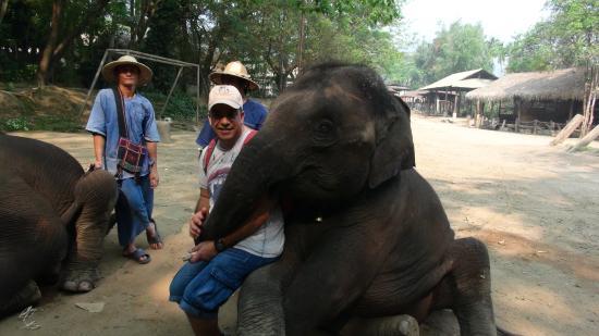 Jumbo Elephant Camp Day Tour: RIGOLO