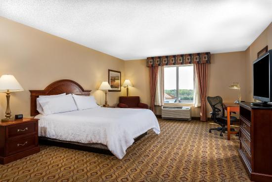 Hilton Garden Inn Florence: King Bed Larger Room