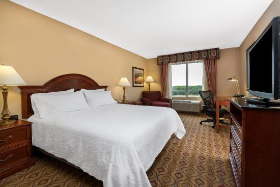 Hilton Garden Inn Florence: King Bedroom