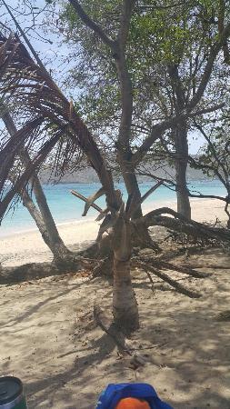 Lower Bay Beach: 20160531_114241_large.jpg