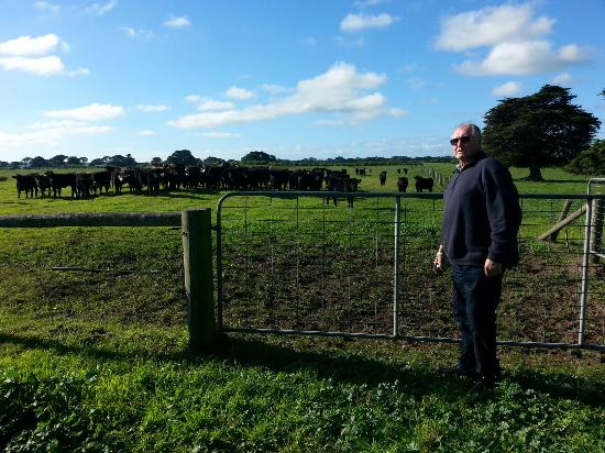 King Island Farm Tours - Meat Your Beef: Wozza is saying hello to the lovely young girls.