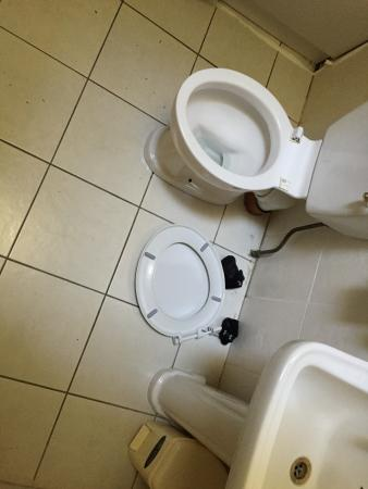 Wolseley Holiday Homes at Mount Wolseley Hotel, Spa & Country Club: Broken Toilet upon arrival