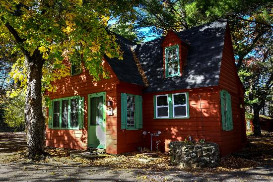 Birchcliff Resort : Old time cabin for 4