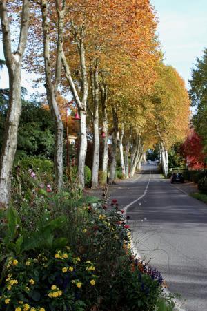 Pouillon, Frankrike: Boulevard des Pyrénées à Habas