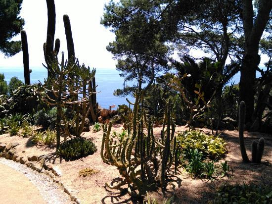 Lovely views of turquoise bays calella de for Jardin botanico cap roig