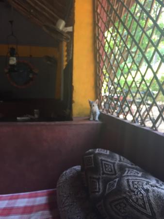 The Goan Corner : photo2.jpg