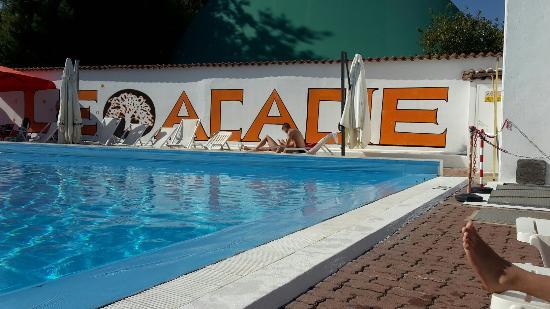 Le Acacie