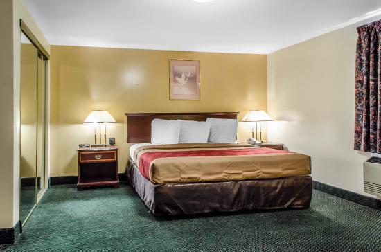 Econo Lodge Inn & Suites Denver: Guest room