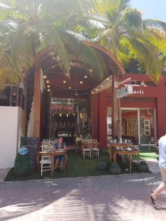 The Little Teapot - Playa Del Carmen