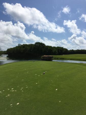 El Camaleon Mayakoba Golf Club: photo8.jpg