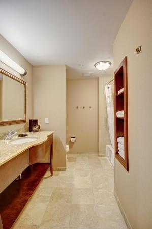 Hampton Inn and Suites Alexandria: Standard Bathroom
