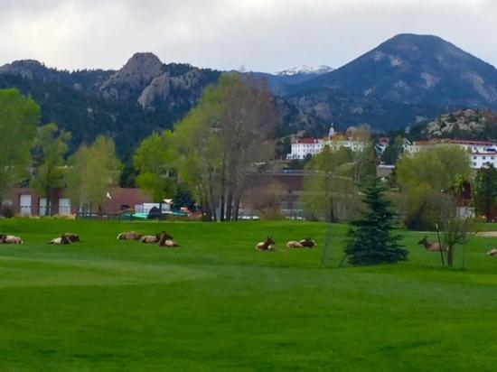 The Estes Park Resort: View from the trail which is attached to the hotel