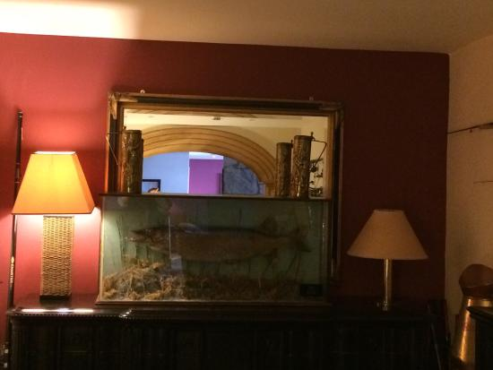 Fairhill House Hotel: Lovely food, comfortable room, nothing too fancy but just what we needed for a brief stay. Conve