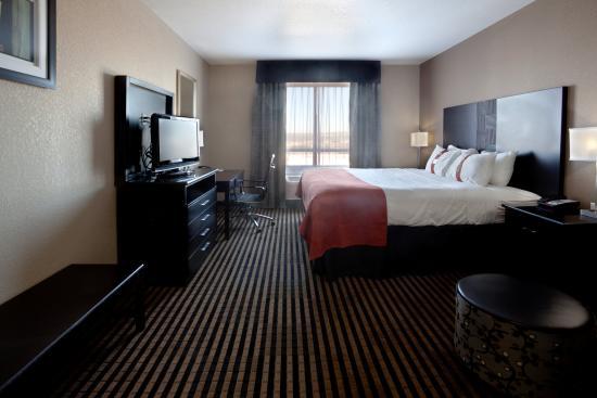 Holiday Inn San Antonio N - Stone Oak Area: King Bed Guest Room