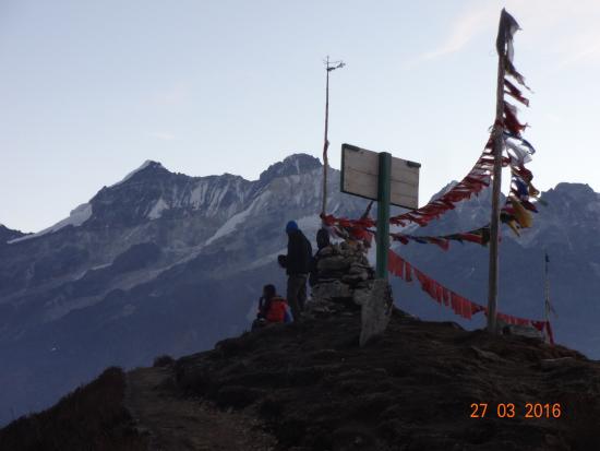 Dzongri La: dzongri top