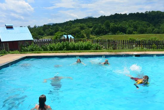Belle Meade Bed and Breakfast: swimming