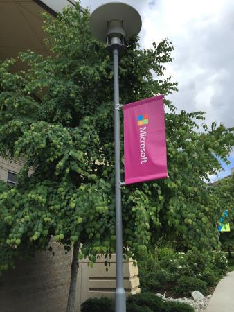Microsoft Visitor Center: photo2.jpg