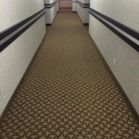 Comfort Inn & Suites Medicine Hat: new carpet smell :)