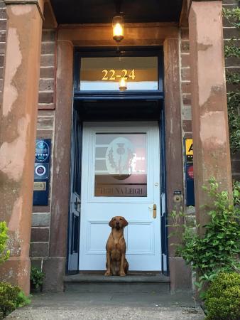 Tigh Na Leigh : Rubi, waiting for dinner