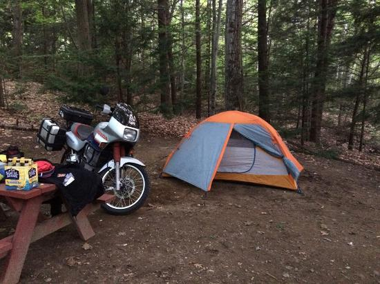 Shelburne, NH: Site 101 a favorite tent/hammock site