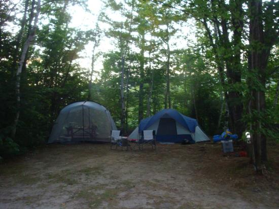 Shelburne, Nueva Hampshire: Nice wooded camp sites
