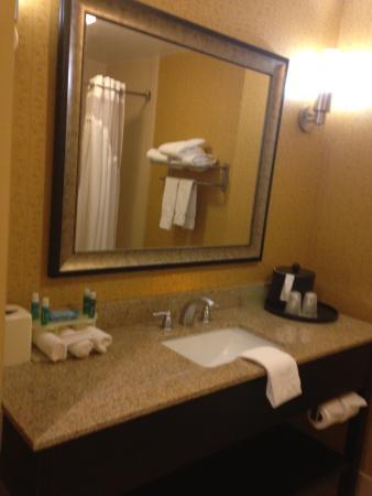 Holiday Inn Express Hotel & Suites Nashville - Opryland Photo