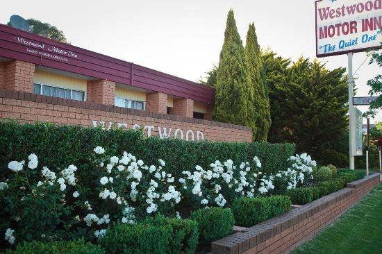 Westwood Motor Inn
